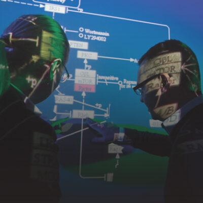 Researchers at Harvard Medical School discuss cellular pathways.
