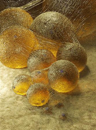 Artist's rendering of adipocytes, as translucent spheres.