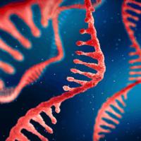 M RNA illustration2 400sm